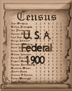 Richardson, Wade Hampton - United States Federal Census 1900, taken between 1 Jun 1900 and 30 Jun 1900